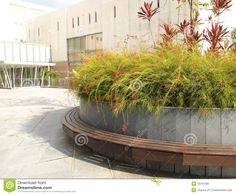 Landscaping, City Offices Area Royalty Free Stock Image - Image ...