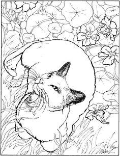 joker coloring page printable | tatttoo | Pinterest | Färben, Der ...