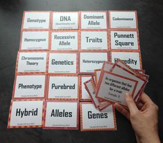 Amy Brown Science: Dichotomous Classification Keys: Science Students ...