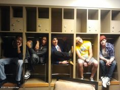 "Warblers ""in the closet."" I can honestly say this is the greatest thing I've ever seen."