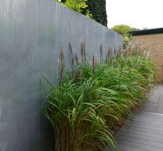 grassen langs de 'wand'