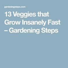 13 Veggies that Grow Insanely Fast – Gardening Steps