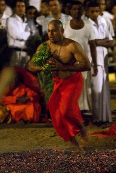 #46 Kataragama, Sri Lanka. Firewalking at the Devalaya festival.