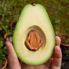 Artisan Carefully Carves Avocado Pits into Fantastical Figures of the Forest
