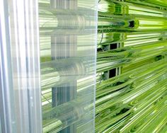The algae company Heliae has been focusing on high-value products, but its ramped-up production process could mean a bright future for algae biofuel.