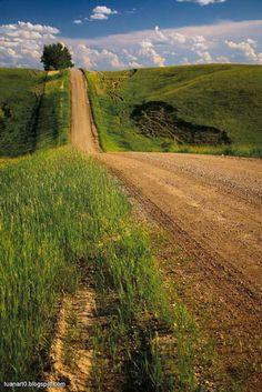 Country road (North Dakota)