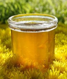 Dandelion Recipes, Wine Jelly, Dandelion Flower, Aromatic Herbs, Flower Food, Canning Recipes, Natural Cures, Permaculture, Health Remedies