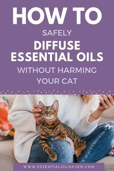 Tips to Safely Diffuse Essential Oils Without Harming Your Cats Essential Oils For Fleas, What Are Essential Oils, Young Living Essential Oils, Easential Oils, Oil Safe, Essential Oil Diffuser Blends, Young Living Oils, Essentials, Cats