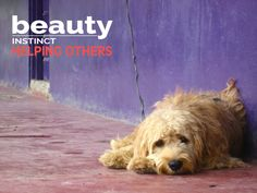 #helpingwomen #helpinganimals #givingback #beautyinstinct