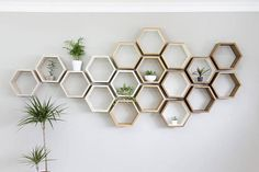 T h e . S h e l f - Our honeycomb hexagon wall shelves are a fun and modern way to display your favourite items around the house. The matching geometric shape of these shelves mean they can be arranged in a wide range of different patterns and layouts to form fun and quirky wall features. They look great both on their own or as a large cluster for a big impact wall! Their shallow depth means they are work just as well in a hallway or staircase as they do in any other room of the house…