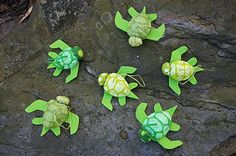 During Quiet Time: Search results for turtle  these nutshell turtles are quick and cute!