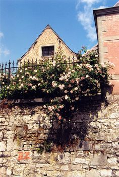 Fence of Roses - Namur Two Rivers, Main Attraction, Most Beautiful Cities, Capital City, Castles, Fence, Poetry, Roses, Europe