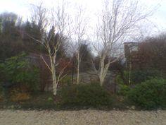 Garden Kingdom Hall Folkestone