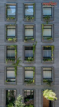 41 Bond Street Wall Exterior, Exterior Cladding, Facade Design, Exterior Design, Landscape Elements, Green Architecture, Bond Street, Facade House, Facades