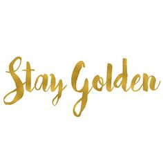 Buy 'Stay Golden Sticker' by MariskaNicole as a Sticker, Transparent Sticker, or Glossy Sticker Gold Quotes, Bio Quotes, Framed Quotes, Tumblr Quotes, Quotes To Live By, Gold Aesthetic, Aesthetic Words, Imagenes Free, Inspirational Quotes Background
