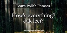 say hello in polish