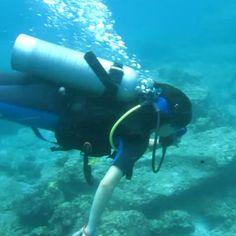 ikan mana ikan.......#diving#phuket#throwback#fish#sea#like4like#likeforlike#instagood#instaphoto#instalike#mytrip#underwater#scubadiving#ocean#loveit#explore#adventure#explorephuket