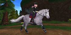It's time for our beloved Jorvik Pony to get a new look! The updated Jorvik Pony! The Jorvik Pony is Jorvik's very own pony, known to be a great beginne. Star Stable Horses, Horse Star, Star Stable Online, Horse Riding Gear, Horse Animation, Horse Games, Star Wars, Cute Stars, Stars At Night