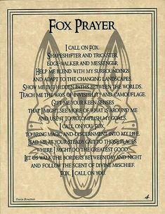 Fox lore