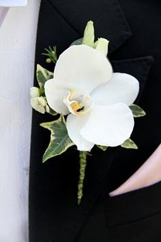 Orchid Boutonniere So simple yet so perfect, a white Phalaenopsis Orchid with buds of white Lissianthus and Wax Flower Blossom, a very elegant Groom's Boutonniere Ranunculus Boutonniere, White Boutonniere, Groomsmen Boutonniere, Boutonnieres, Gold Corsage, Flower Corsage, Corsage Wedding, Wedding Bouquets, Wedding Buttonholes