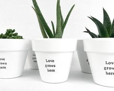 Modern, personalized, eco-friendly plant pots & gifts by ChickadeePots Potted Plants, Plant Pots, Moving Gifts, Bridesmaid Proposal Gifts, Succulent Gifts, Teacher Christmas Gifts, Painted Pots, Succulents Diy, Garden Gifts