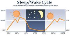 54 Shocking Sleep Statistics, Data and Trends Revealed for 2020 Sleep Center, Rare Disorders, Sleep Paralysis, Rem Sleep, Mental Health Problems, Lucid Dreaming, Kids Health, How To Fall Asleep, Statistics