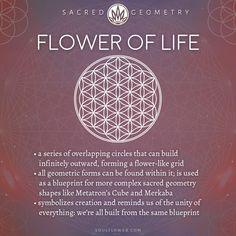 Flower of Life Meaning - Sacred Geometry - Soul Flower (Soulflower Clothin . - Flower of Life Meaning – Sacred Geometry – Soul Flower (Soulflower Clothing) – - Sacred Geometry Meanings, Sacred Geometry Tattoo, Symbols And Meanings, Symbols Of Life, Geometry Shape, Geometry Pattern, Fractal Geometry, Spiritual Symbols, Sacred Symbols
