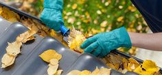 Fall into Home Maintenance