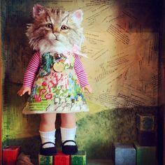 Kitten Thrupenny