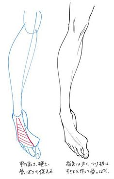 How to draw attractive feet.Tips on how to draw the front and sides and how to . - Tips on how to draw the front and sides and how to draw your finger …-How to draw attractive feet - Leg Reference, Drawing Reference Poses, Anatomy Reference, Drawing Skills, Drawing Poses, Drawing Techniques, Drawing Legs, Feet Drawing, Body Drawing