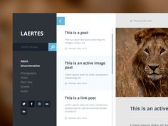 Laertes Web app by Peter Knoll #interface #UI #UX