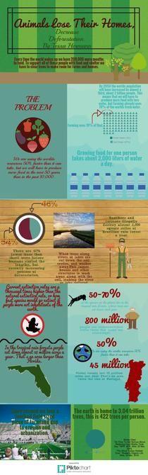 Untitled Infographic   Piktochart Infographic Editor