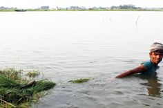 ¿Cómo hay que compensar a los países pobres debido a el  cambio climático?