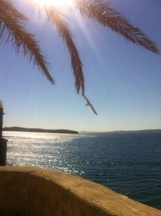 Rab, Croatia Stony, Beaches, Beautiful Places, Water, Outdoor, Gripe Water, Outdoors, Sands, Outdoor Games