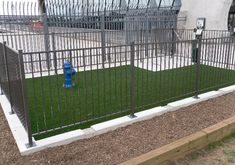 K9Grass - The artificial grass designed specifically for dogs!
