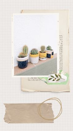 Cover Wallpaper, Flower Background Wallpaper, Flower Phone Wallpaper, Flower Backgrounds, Iphone Wallpaper, Instagram Collage, Instagram Background, Instagram Frame Template, Dried Flower Arrangements