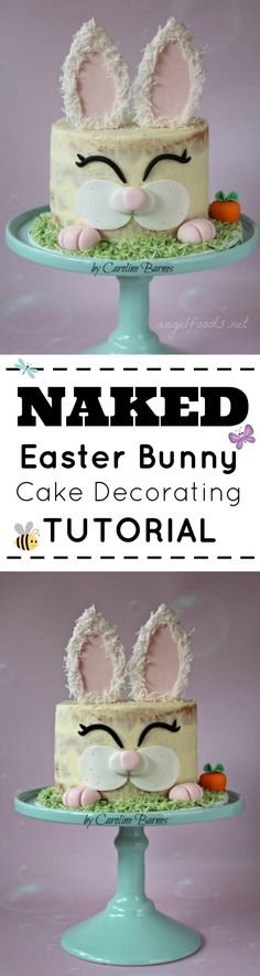 Easter Bunny Cake Tutorial!  Easy to follow and adorable!