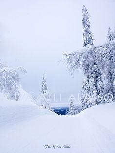 """Blue moment... Sininen hetki"""" Kumpuvaara, Kuusamo by Aili Alaiso"""