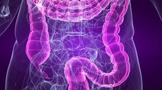 """""""Leaky gut syndrome"""" is a term used to describe symptoms and conditions caused by the immune system reacting to particles, toxins or other substances that have been absorbed into the bloodstream via a porous (""""leaky"""") bowel (source: NHS). The digestive system not only breaks down food and absorbs nutrients, it... Continue reading »"""