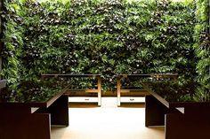 Iluminação uplight para o jardim vertical da Casa Cor SP. #projetoiluminação #casacor #contrateumarquiteto #féresbeharquitetura