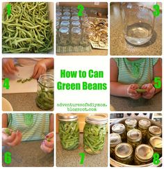 Canning Green Bean