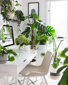 We do advise you to bring the indoor greenery into your home office decoration. Besides the mood booster, you can even make your home office has a fresh and peaceful atmosphere. Home Office Storage, Home Office Space, Home Office Desks, Office Decor, Office Inspo, Office Workspace, Office Ideas, Simple Artwork, Ikea Furniture
