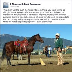 Words of advice from Buck Brannaman Horse Riding Tips, Horse Tips, Horse Training, Training Tips, Buck Brannaman, Inspirational Horse Quotes, The Horse Whisperer, Natural Horsemanship, Riding Lessons