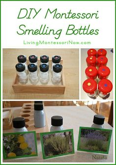 DIY Montessori Smelling Bottles by Deb Chitwood, via Flickr....I like the extension with the plants photos