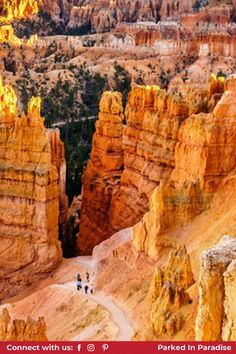 Utah is home to the Mighty Five National Parks. These geologic wonders attract travelers from all over the world. The best outdoor adventure guide on: Arches National Park, Bryce Canyon National Park, Canyonlands National Park, Capitol Reef National Park and Zion National Park. Road trip on your way to or from Salt Lake with the kids and experience so many out door things to do and see. Camping fun for everyone. Capitol Reef National Park, National Parks, Private Campgrounds, Backpacking, Camping, Canyonlands National Park, Bryce Canyon, Hiking Trails, Arches
