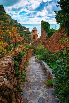 Autumn Pathway Of Life - Cinque Terre, Italian Riveria, Italy