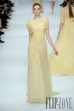 Elie Saab – 40 photos - the complete collection