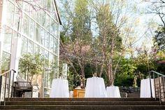 Fairy Tale Garden Wedding, outdoor cocktail hour, string lights. For more inspiration, visit www.fetenashville.com | Féte Nashville