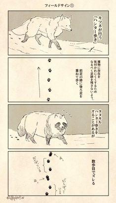 帆 (@p6trf_w) さんの漫画 | 56作目 | ツイコミ(仮) Anime Animals, Animals And Pets, Funny Animals, Cute Animals, Comic Character, Character Design, Cat Comics, Forest Animals, Cute Illustration