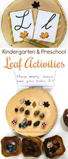 The Best Kindergarten and Preschool Leaf Theme Lesson Plan, Preschool Themes, Leaf Activities Preschool, Reggio, Preschool Curriculum, Alphabet, Leaves preschool